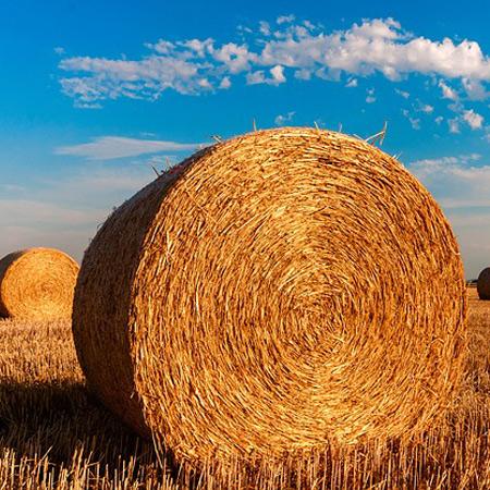 fotowoltaika oferta dla rolników